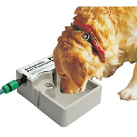 Lion Automatic Pet Fountain Water Bowl